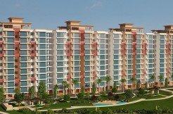 AVL 36A Gurgaon