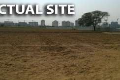 actual site of pyramid urban homes 2 affordable homes